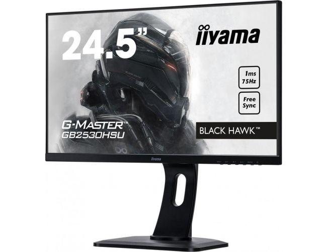 Iiyama G-Master GB2530HSU-B1 Monitor