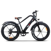 ESF XR6 Ηλεκτρικό Ποδήλατο Μαύρο